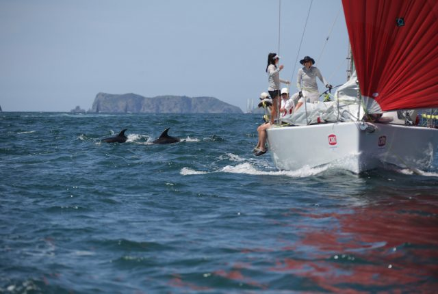 Island Racers show it's not all about winning at CRC Bay of Islands Sailing Week 2018 teaser image