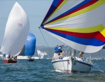 Island Racing divisions swell as entries roll in for Bay of Islands Sailing Week teaser image
